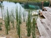 Natūralus baseinai su hidroizoliacija