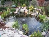 Dekoratyvinis baseinas su žuvelėmis