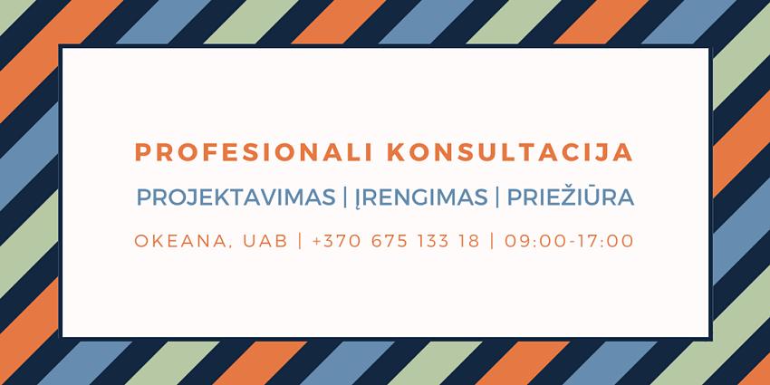 Profesionali konsultacija, tvenkinių projektavimas, įrengimas, priežiūra