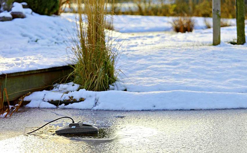 Tvenkinio paruošimas žiemai