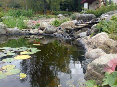 Dirbtinis baseinėlis su žuvelėmis